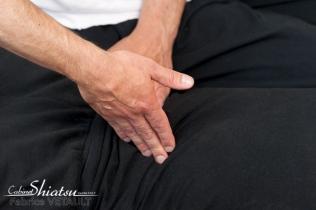 Shiatsu-massage japonais fabrice vétault-praticien Shiatsu- Chéméré